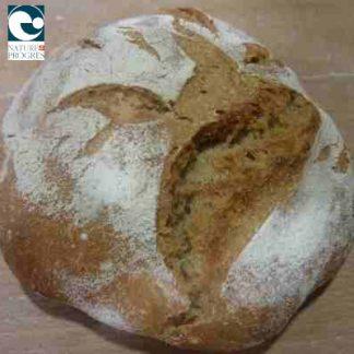 Pain Bio Petite boule blé 500 gr