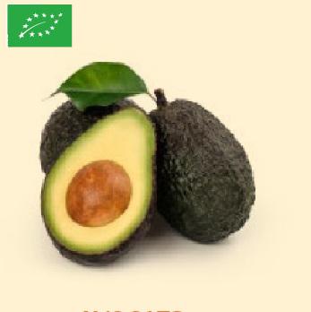 Avocats bio Bioespuna