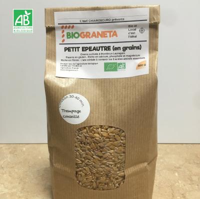 petit epautre bio en grains